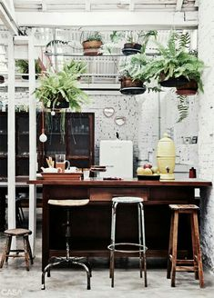 Wooden Bar, white walls and plants give this kitchen an awesome outdoors but also simplistic taste!