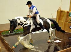 Cross Country class...model horse show.  AMAZING custom creation!