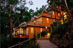 night view of hotels in munnar | travel guide of india | honeymoon places in india | holidaying in india