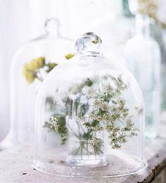 Los fanales, comúnmente conocidos como campanas de cristal, son todo un must-have en decoración. Resaltarán cualquier detalle que coloques en su interior: flores, plumas, recuerdos...