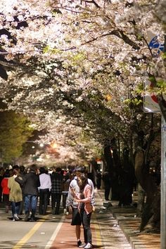 Seoul, Korea; beautiful. But do people really walk all over the road on a regular basis? >.>