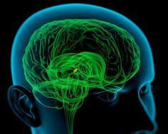 Alimentos para reativar sua glândula pineal: Nutrição para o olho da mente  O olho da mente, cientificamente conhecido como a glândula pineal, é considerado a porta de entrada para os níveis mais elevados de consciência, no caso de você não estar ciente a glândula pineal é…
