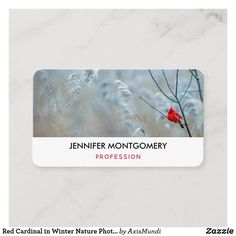 Red Cardinal in Winter Nature Photo Christmas Business Card