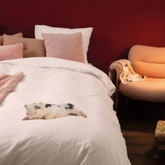 Little pig 'Peggy' seems to love your bed as much as you do! Funny bedding, by SNURK.