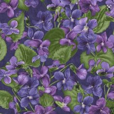 The dark purple background of this quilting fabric make the violet print's colors pop. Sweet Violets, Flower Quilts, Purple Fabric, All Things Purple, Quilting Designs, Quilt Design, Flower Pictures, Vintage Flowers, Pansies