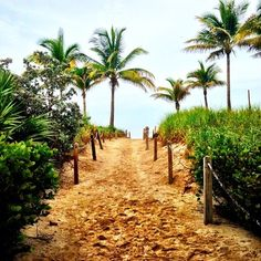 Miami Swim Week 2014 - Ashley Sky - Hailey Clauson - Julien Herrera