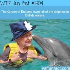 Weird powers of the Queen of England - WTF fun facts