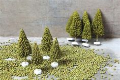 Mini Evergreen Trees