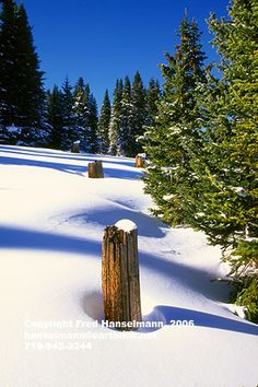 Winter in Colorado, Snowy Shrine Pass, near Vail and Breckenridge