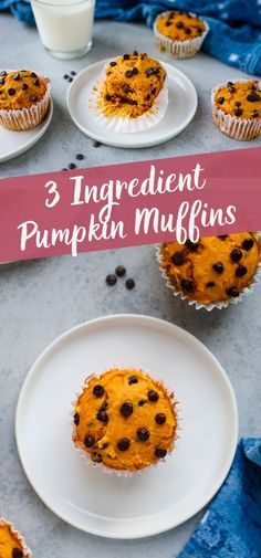 These 3 ingredient chocolate chip pumpkin muffins might just be the easiest muffin recipe you've ever tried! You won't believe how easy it is to make soft, tender, pumpkin muffins!