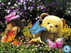 Beautiful Teddy Bear