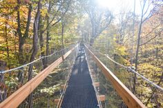 The Judith and Maynard H. Murch Canopy Walk at Holden Arboretum in Kirtland, Ohio features a 500 ft. long elevated walkway suspended 65 ft. above the forest floor