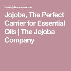 Jojoba, The Perfect Carrier for Essential Oils | The Jojoba Company