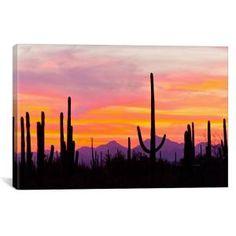 "iCanvas ""Saguaro Cacti At Sunset I, Saguaro National Park, Sonoran Desert, Arizona, USA"" by Cathy & Gordon Illg Canvas Wall Art - The Home Depot Canvas Artwork, Canvas Art Prints, Canvas Wall Art, Canvas Painting Sunset, 3 Canvas Painting Ideas, Wow Art, Online Art Gallery, Graphic Art, Art Paintings"