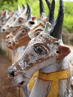 India, Chettinad; Terracotta Horses Lined Up by the Ayyanar Temple Photographic Print by Niels Van Gijn at AllPosters.com