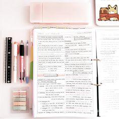 A Studyblr for the Distracted: Photo School Organization Notes, Study Organization, Nursing Organization, College Notes, College School, Pretty Notes, Beautiful Notes, School Study Tips, Study Hard
