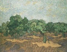 van Gogh - Olive Grove: Pale Blue Sky Anno: 1889 Luogo: Saint-Remy -  Locazione: New York:The Met.