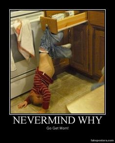 Nevermind Why - Demotivational Poster by bridgett