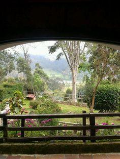Turquino @ Zipacón, Colombia