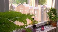 Gammaldags husfasader som står tätt ihop, som fastklistrade i varandra, har en speciell atmosfär. Olika höjd på husen och stilar på fönster blir till en härlig fröjd för ögat!