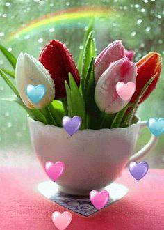 rosas de buenas tardes ile ilgili görsel sonucu