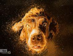 Joe by Pavlos Pavlou on 500px