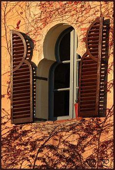Finestres i ventanas