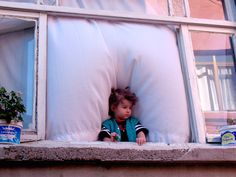 pencere onu cicegi by ~Sekendiz on deviantART