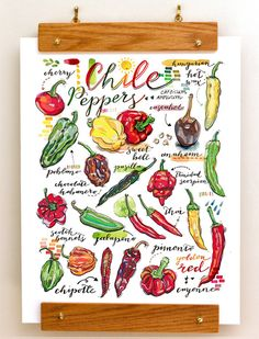 Chile peppers print. Chili. Garden. Food illustration. Kitchen decor. Spring. Gardening. Earth. Organic. Spicy. Homegrown. Healthy. Grow.
