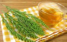 Prasličká roľná by nemala chýbať vo vašej domácej lekárničke. Cellulite, Health And Wellness, Health Fitness, Natural Medicine, Seaweed Salad, Green Beans, Carrots, Herbalism, Cabbage