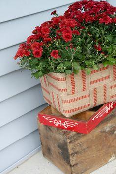 Styrofoam cooler + jute webbing = cute planter