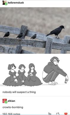 Crowto-Bombing: When Crows Insert Themselves In Another Bird Group (Short Thread) - World's largest collection of cat memes and other animals Cute Comics, Funny Comics, Animal Memes, Funny Animals, Poses References, Stupid Funny Memes, Tumblr Posts, Cute Drawings, Awesome Drawings