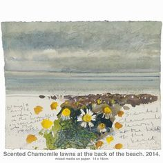Kurt Jackson: Scented chamomile lawns at the back of the beach. Scilly - 2014 - mixed media on paper Art Gallery Uk, Kurt Jackson, St Just, Jackson's Art, Artist Sketchbook, A Level Art, Paintings For Sale, Contemporary Art, Modern Art