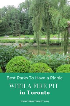 Best Parks To Have a Picnic with a Fire Pit #parks #Toronto #firepit #picnic #best
