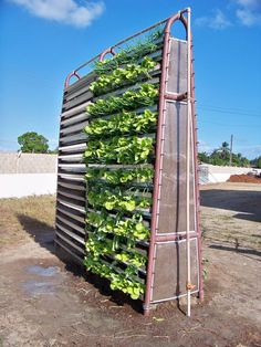 Babylon Garden is a system of vegetative modules made of recycled plastic or composite of coconut fiber, capable of containing substrate of composted organic household waste for planting in the vertical direction of small fruit, vegetables, legumes, flowers, mushrooms and others.