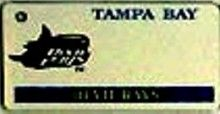 """This is an MLB Tampa Bay Devil Rays Team License Plate Key Chain or Tag. An excellent and affordable gift for an avid MLB fan! The key chain is available with engraving or without engraving. It is a standard key chain made of durable plastic and size is approximately 1.13"""" x 2.25"""" and 1/16"""" thick."""