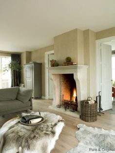 love the fireplace in combination with the muted colors