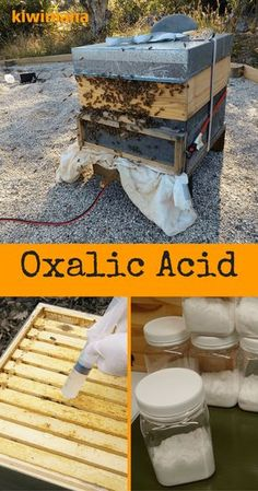 """Oxalic Acid is used in many ways, in the fight against the """"Varroa Destructor Mite"""" - which feeds on Bees. Oxalic Acid is considered an organic varroa treatment. Bee Mites, Bee Hive Stand, Honey Bee Hives, Honey Bees, Oxalic Acid, Beekeeping For Beginners, Bee Supplies, Raising Bees, Bee Farm"""