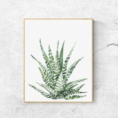 Art & Illustrations by GusGusStvaraonica Watercolor Plants, Watercolor Leaves, Watercolor Paintings, Watercolour, Minimalist Painting, Minimalist Art, Art Prints For Home, Home Art, Illustrations