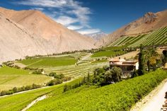 The Chilean 'wine parks' you won't want to leave | LE PAN