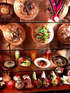 Japanese plastic food display