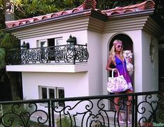 "Pet-Friendly Decorating -- Paris' Dog House from 3/5/13 blog ""Dog-Friendly Designing"""