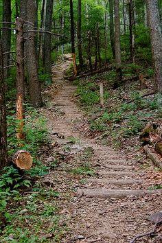 Hiking In Shenandoah National Park, Virginia