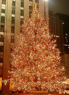 Rockefeller Center Christmas tree lights