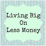 Living Big on Less Money
