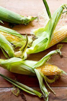 Corn by Rikki Snyder - rikkims