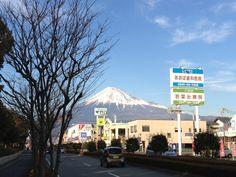 Tonenomiya park