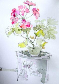 line and wash geranium
