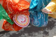 party favors in a bandana