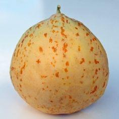 Neu! Honigmelone Crane (Samen)